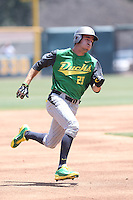 Steven Packard #29 of the Oregon Ducks runs the bases during a game against the UCLA Bruins at Jackie Robinson Stadium on May 18, 2014 in Los Angeles, California. Oregon defeated UCLA, 5-4. (Larry Goren/Four Seam Images)