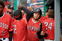 Batavia Muckdogs J.D. Orr (22) celebrates with teammates during a NY-Penn League game against the Lowell Spinners on July 11, 2019 at Dwyer Stadium in Batavia, New York.  Batavia defeated Lowell 5-2.  (Mike Janes/Four Seam Images)