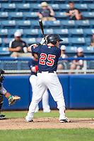 Jayce Ray (25) of the Salem Red Sox at bat against the Lynchburg Hillcats at LewisGale Field at Salem Memorial Baseball Stadium on August 7, 2016 in Salem, Virginia.  The Red Sox defeated the Hillcats 11-2.  (Brian Westerholt/Four Seam Images)