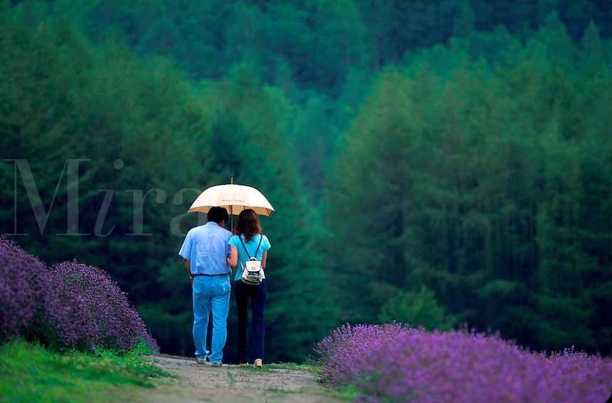 Couple walking through rain in lavender field