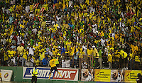 Kingston, Jamaica - Friday, September 7, 2012: The USMNT lost to Jamaica 2-1 during World Cup Qualifying at National Stadium. Rodolph Austin celebrates his goal.