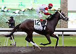 We Miss Artie wins the Dixiana Breeders' Futurity at Keeneland Race Course.   October 05, 2013.