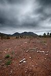 Flinders Ranges National Park-Wilpena Pound