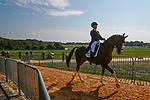October 15, 2021: Zara Tindall (GBR), aboard Class Affair, leaves enters the ring before competing in the Dressage Test at the 5* level during the Maryland Five-Star at the Fair Hill Special Event Zone in Fair Hill, Maryland on October 15, 2021. Jon Durr/Eclipse Sportswire/CSz
