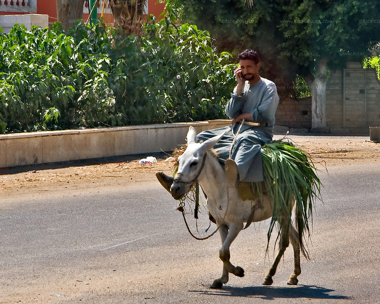 Saqqara, Cairo, Egypt -- A workman talks on his cell phone as he takes his ride to lunch. © Rick Collier / RickCollier.com