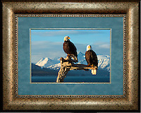"""Image Size:  10"""" x 15""""<br /> Finished Frame Dimensions:   20.5"""" x 25.5""""<br /> Quantity Available: 1"""