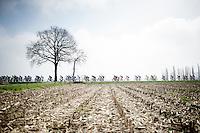 peloton riding through the flat Kempen region<br /> <br /> 103rd Scheldeprijs 2015