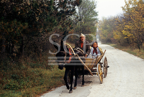 Bulgaria. Woman and man on a rickety old donkey cart on a tree lined rural road.