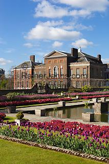 United Kingdom, England, London - Kensington: Kensington Palace and gardens with spring Tulips | Grossbritannien, England, Kensington im Westen Londons, Stadtbezirk Kensington and Chelsea: Kensington Palace and Gardens