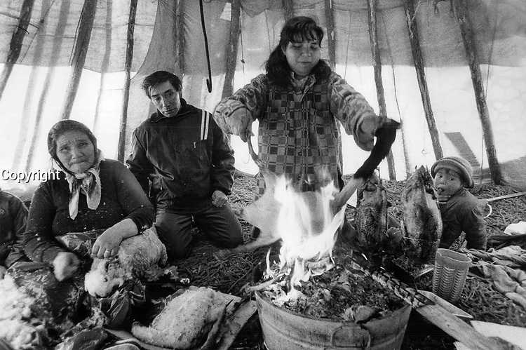 1972 FILE PHOTO - ARCHIVES -<br /> <br /> The Indians are angry because no one consulted them before plans were made for the area. While Nellie Lameboy prepares a goose; Dina Duff plucks another and Josie Sam looks on.<br /> <br /> PHOTO :  Keith  BEATY  - Toronto Star Archives - AQP