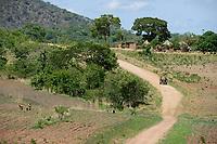 ZAMBIA, Sinazongwe, Tonga tribe, village Muziyo, farming in mountain range, contour farming / Kleinbauern bestellen ihre Felder, Kontur Anbau