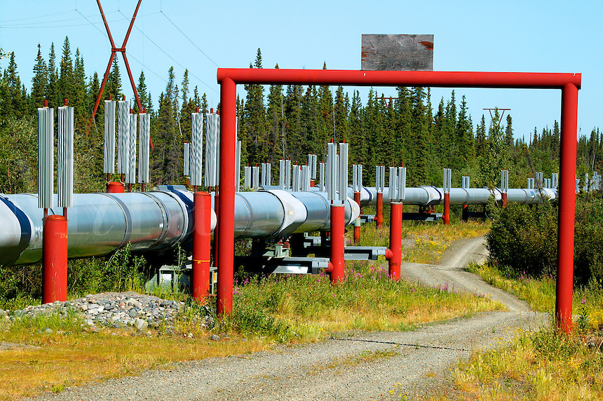 Trans-Alaska Pipeline, Copper River Valley, Alaska