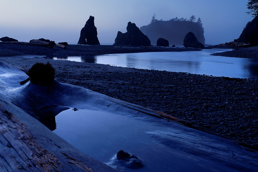 Sea stacks reflected in Cedar Creek and in small puddle on driftwood at dusk, Ruby Beach, Olympic National Park, Jefferson County, Washington, USA
