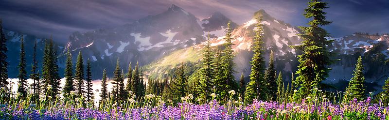 Wildflowers and Tatoosh Mountains. Mt. Rainier National Park, Washington Sky has been added