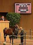 12 September 2010.  Hip #90 Street Cry (IRE) - Shopping filly, sold for $600,000 at the Keeneland September Yearling Sale.   Consigned by Three Chimneys.