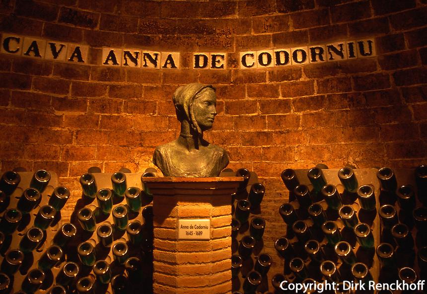 Sadurni d'Anoia, Cava Codorniu, Kellerei, Katalonien, Spanien