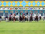 August 13, 2011.Horses leave the gate for the La Jolla Handicap at Del Mar Thoroughbred Club, Del Mar CA