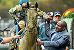 ELMONT, NY - OCTOBER 01: Jockey Manuel Franco  and Trainer Charlton Baker high five after Joker #3 won the Vosburgh Stakes at Belmont Park on October 1, 2016, in Elmont, NY. (Photo by Scott Serio/Eclipse Sportswire/Getty Images)