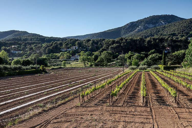 Agriculture dans la vallée de l'Huveaun près de Saint-Zacharie