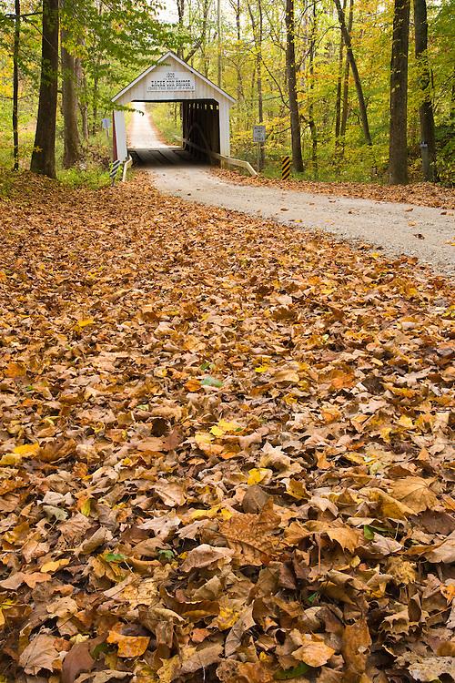 The Zache Cox Covered Bridge in the fall; Parke County, IN