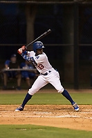 AZL Dodgers center fielder Rolando Lebron (13) at bat during an Arizona League game against the AZL Angels at Camelback Ranch on July 8, 2018 in Glendale, Arizona. The AZL Dodgers defeated the AZL Angels by a score of 5-3. (Zachary Lucy/Four Seam Images)