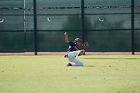 14U-Total Baseball Vipers v Saddleback Cowboys Black