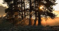 Sunrise photographed at Swan Lake Flat.