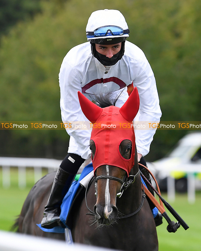 Kadupul ridden by Rossa Ryan goes down to the start of The Irish Stallion Farms EBF Fillies' Nursery Stakes       during Horse Racing at Salisbury Racecourse on 11th September 2020