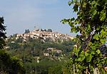 Italien, Piemont, Weinberge und Weinort Rosignano Monferrato   Italy, Piedmont, vineyards and Rosignano Monferrato