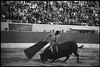 19 Septembre 1965. Vue de la corrida de Curio Giron dans les arènes de Toulouse.