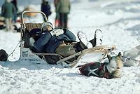 Musher Naps Skwentna Checkpoint Iditarod AK