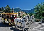 Italien, Suedtirol, Meran: eine Stadtrundfahrt mit der Pferdekutsche | Italy, South-Tyrol, Alto Adige, Merano: sightseeing tour with horse-drawn carriage