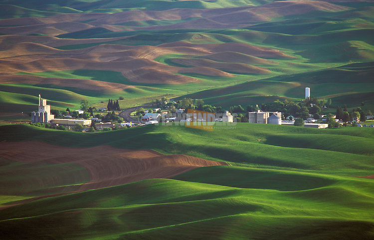 Rolling hills of wheat fields; view from Steptoe Butte State Park, Palouse area, eastern Washington.
