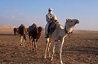 Kamelreiter bei Douz, Tunesien