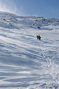 Group of skiers traveling south on the Appalachian Trail (Gulfside Trail) near Mount John Quincy Adams in the Presidential Range of the New Hampshire during the winter months. Strong winds cause snow to blow off the mountain top.