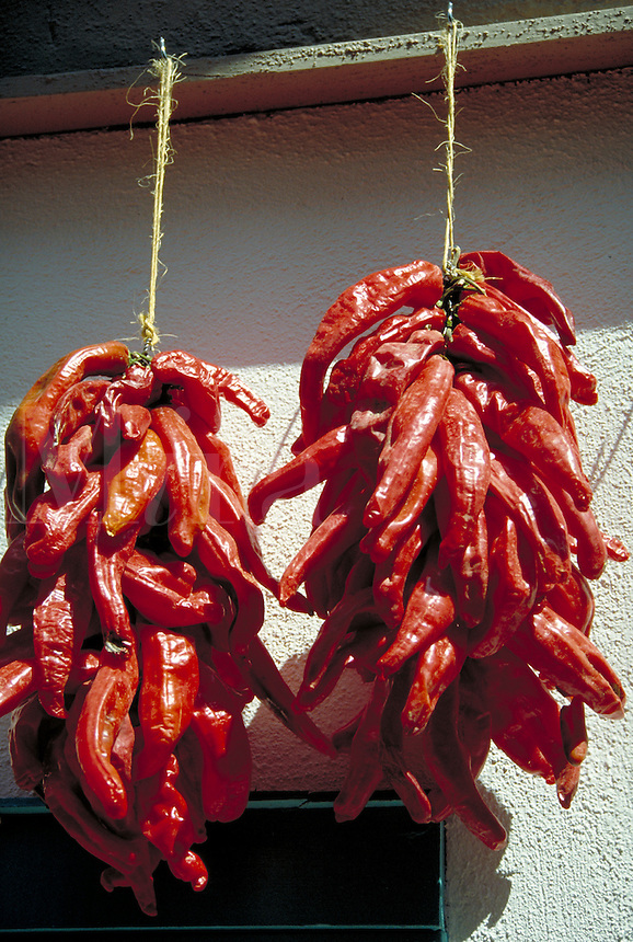 Red chili peppers drying in a bunch on a string at a shop. food, cooking, spices, cuisine. New Mexico.