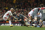 Dan Lydiate pounces on the loose ball<br /> Dove Men Series 2013<br /> Wales v Tonga<br /> Millennium Stadium - Cardiff<br /> 22.11.13<br /> ©Steve Pope-SPORTINGWALES