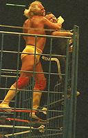 Hogan Hogan  One Man Gang 1996<br /> Photo By John Barrett/PHOTOlink