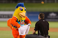 The San Diego Chicken, also known as the Famous Chicken or just The Chicken, helps home plate umpire Adam Beck freshen up between innings of the Fall Stars game at Surprise Stadium on November 3, 2018 in Surprise, Arizona. The AFL West defeated the AFL East 7-6 . (Zachary Lucy/Four Seam Images)