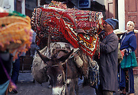 Moroccan man inspects carpets loaded on donkey in Marrakesh.