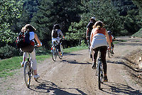 Group of friends cycling through a forest together, Vitrolles-en-Luberon, Provence, France.