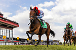 May 15, 2021 : Mean Mary, #5, ridden by jockey Luis Saez, wins the Gallorette Stakes on Preakness Stakes Day at Pimlico Race Track in Baltimore, Maryland on May 15, 2021. Alex Evers/Eclipse Sportswire/CSM