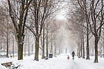 A snowy day on the Commonwealth Avenue Mall in the Back Bay neighborhood, Boston, Massachusetts, USA