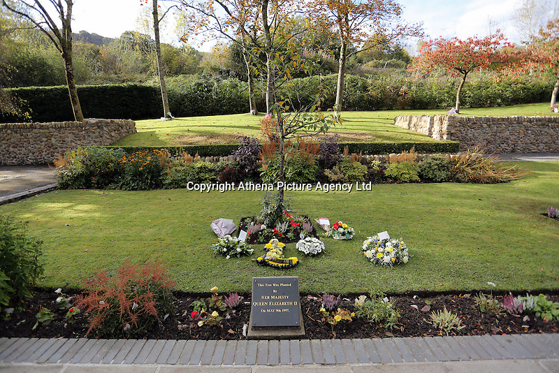 Pictured: A trees planted by HRH Queen Elizabeth at the Memorial Garden Friday 21 October 2016<br />Re: Wales has fallen silent as the country remembered the Aberfan disaster 50 years ago.<br />On 21 October 1966, a mountain of coal waste slid down into a school and houses in the Welsh village, killing 144 people, including 116 children.<br />A day of events to commemorate the disaster included a service at Aberfan Cemetery at 9:15am on Friday.<br />Prince Charles is visiting Aberfan memorial garden before unveiling a plaque in memory of the victims.<br />He will also attend a reception with the families of some of those who lost their lives, before signing a book of remembrance.