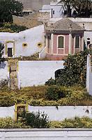 Europe/Espagne/Baléares/Minorque/Ciutadella : Habitat et jardin
