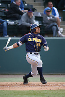 Jonah Davis (14) of the California Bears bats against the UCLA Bruins at Jackie Robinson Stadium on March 25, 2017 in Los Angeles, California. UCLA defeated California, 9-4. (Larry Goren/Four Seam Images)