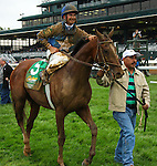 """October 03, 2015: Brody's Cause and jockey Corey Lanerie win the 102nd running of the Claiborne Breeders' Futurity (Grade 1) $500,000 """"Win and You're In Juvenile Division"""" for trainer Dale Romans, and owner Albaugh Family Stable. Samantha Busanich/ESW/Cal Sport Media"""