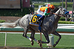 ARCADIA, CA  JUNE 2:  #6 Unique Bella, ridden by Mike Smith, all alone in the stretch of the Beholder Mile (Grade l) on June 2, 2018 at Santa Anita Park in Arcadia, CA. (Photo by Casey Phillips/Eclipse Sportswire/Getty Images)