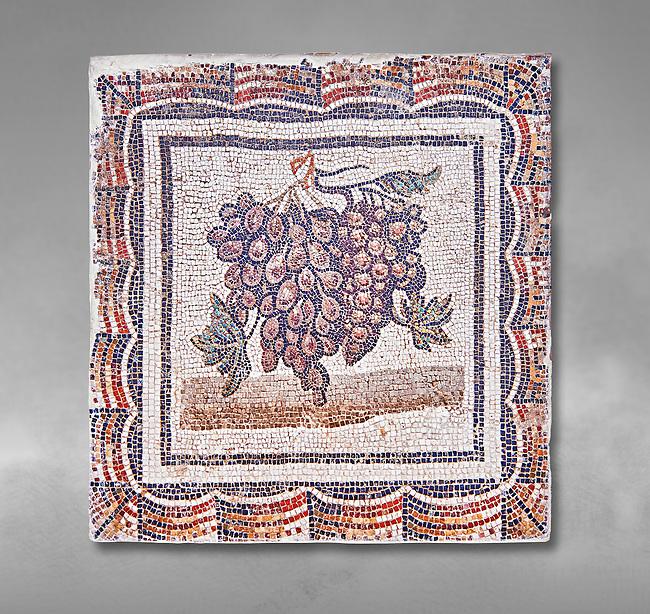 3rd century Roman mosaic panel of black and white grapes. From Thysdrus (El Jem), Tunisia.  The Bardo Museum, Tunis, Tunisia.  Grey background