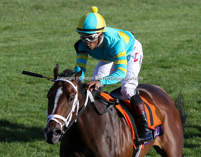 November 6, 2020: Fire at Will, ridden by Ricardo Santana, Jr., wins the Juvenile Turf Presented By Coolmore America on Breeders' Cup Championship Friday at Keeneland on November 6, 2020: in Lexington, Kentucky. Candice Chavez/Breeders' Cup/Eclipse Sportswire/CSM